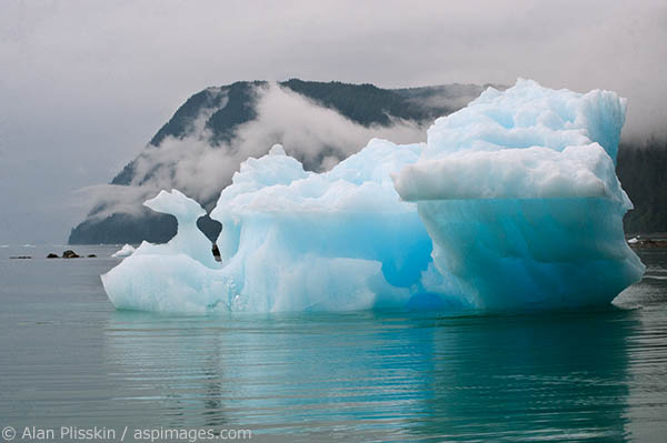 As we went by this iceberg near LaConte Bay I was taken by its different shapes and colors.