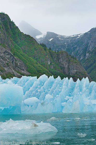 In LaConte Bay near the LeConte Glacier one of the icebergs stood out because of its sawtooth pattern. By shooting it in front of a glacier carved valley, I felt it created an interesting linkage between foreground and background.