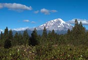 A view of Mount Shasta from its southern side.