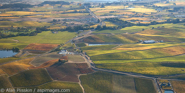 Aerial view of vineyards and wineries in the undulating hills north of the San Francisco Bay in Napa County.