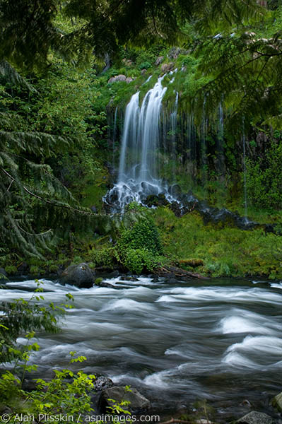 This side waterfall at Mossbrae Falls has an ethereal feel to it.