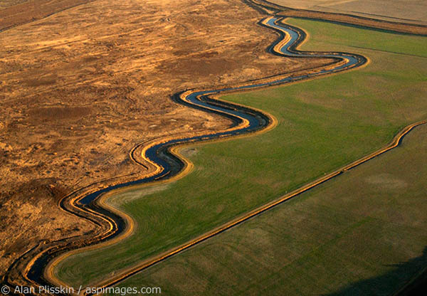 Undulating creek in southern Sonoma County.