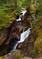 An overcast day opened the shadows and saturated the colors surrounding this waterfall in Glacier National Park.