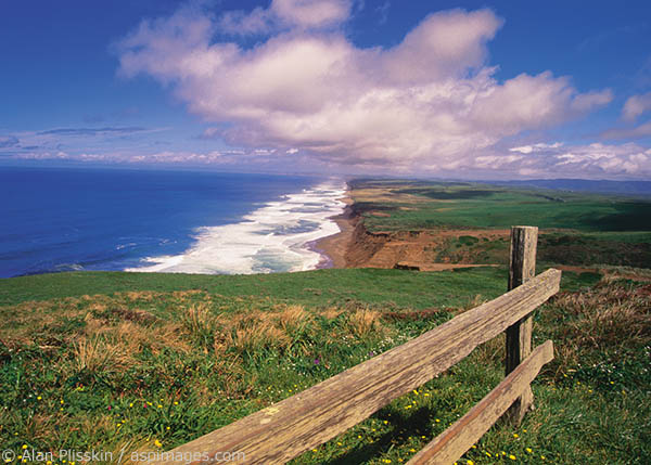 The beach at Point Reyes National Seashore goes on for miles and miles and miles...