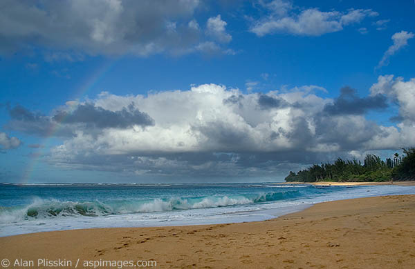 A Rainbow forms over breaking waves on this Kauai beach.