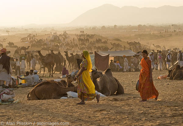 Two woman stroll in the evening at the Pushkar Camel Festival.