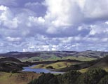 A unique perspective of the Nicasio Reservoir watershed.