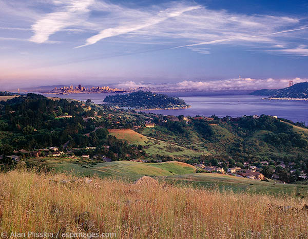 Ring Mountain offers 360 degree views of central Marin and the Bay.