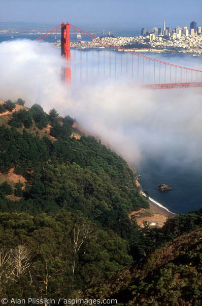 Summer is when the most fog comes rolling through the Golden Gate.