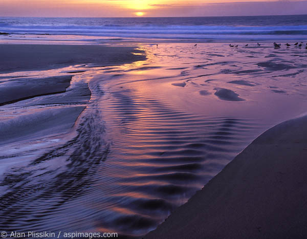 Spectacular colors light up this popular beach on the Point Reyes seashore.