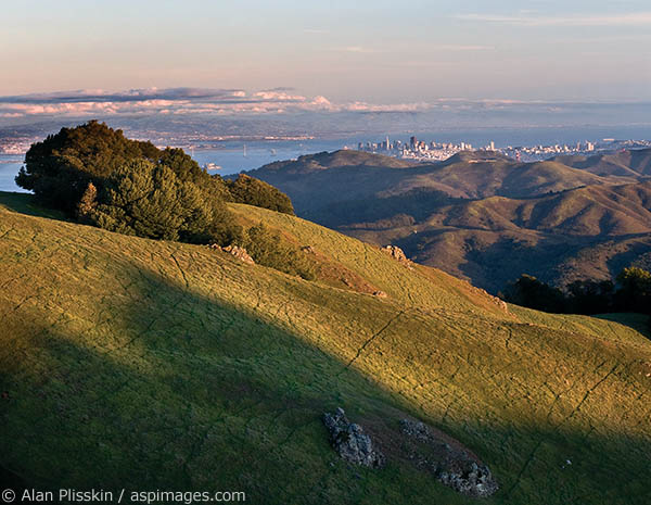 At 2542 feet, Mt Tamalpias offers great views of the Bay Area and southern Marin County coastline.