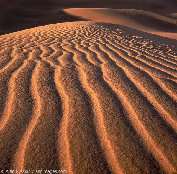 Early morning sunshine highlights the sand pattern in these dunes in Death Valley National Park.