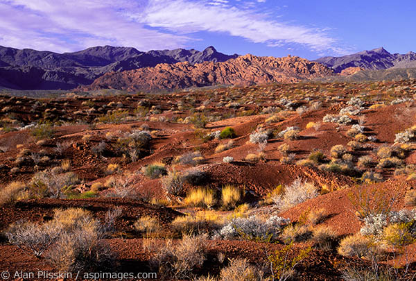 """Red"" pretty much defines the landscape of this state park near Las Vegas, Nevada."